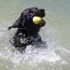 Sookie-splashing-away