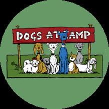 dogs_boarding_kennel_gta