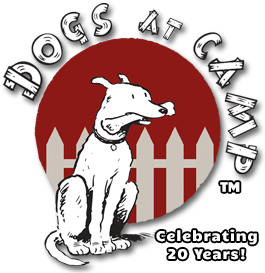 Dogs at Camp | Rated Best Dog Boarding Kennel & Daycare 2019!