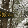 Trail_Winter
